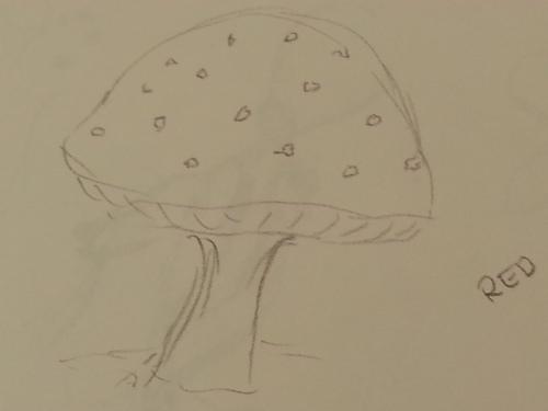 Giant Red Mushroom